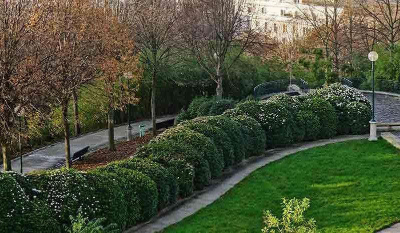 A-découvrir-Belleville…-un-quartier-surprenant-de-Paris